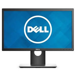 LCD DELL P2017H 20""