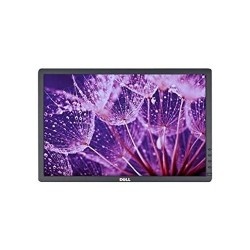 "DELL LCD LED PROFESSIONNEL P1913 (19"")"